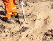 Bentonite Clay image